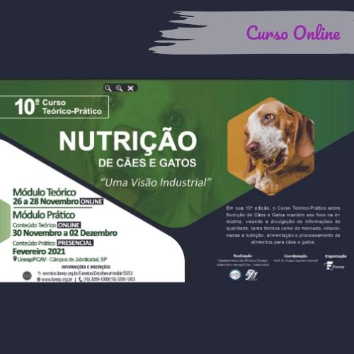 Curso Online Nutricao De Caes E Gatos Funep